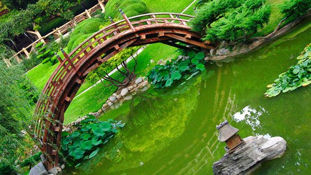 Les jardins japonais les plus beaux du monde - Les plus beaux rideaux du monde ...